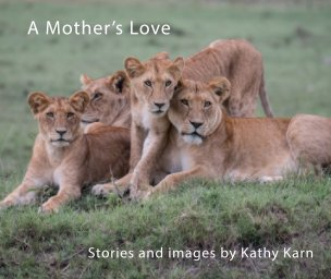 A Mother's Love book cover