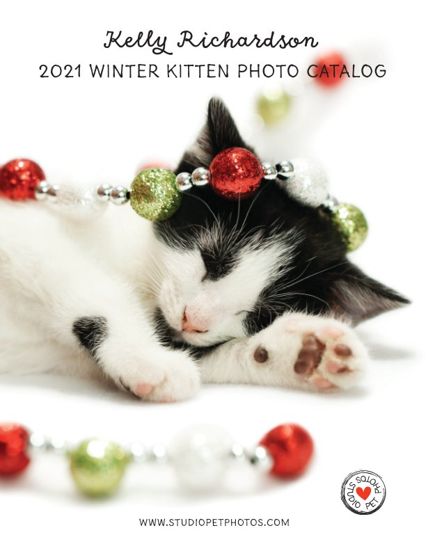 View 2021 Kitten Christmas Photo Collection by Kelly Richardson