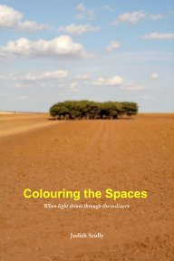Colouring the Spaces book cover