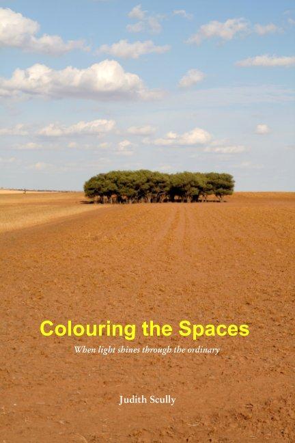 Ver Colouring the Spaces por Judith Scully