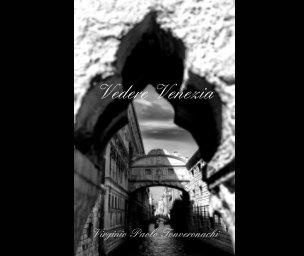 Vedere venezia book cover