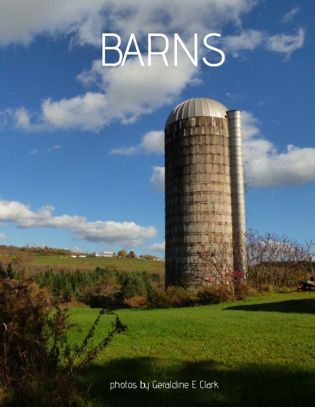 Visualizza Barns di Geraldine E. Clark