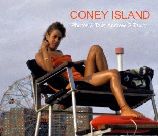 Coney Island book cover