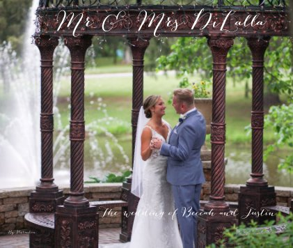 Mr and Mrs DiLalla book cover