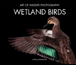 Wetland Birds book cover