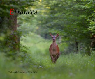 Errances book cover