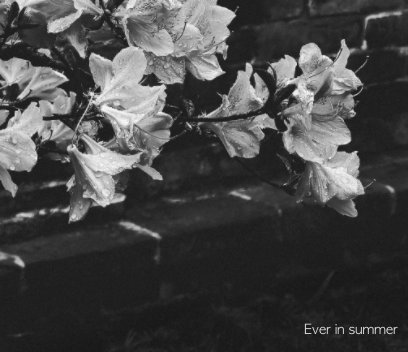 ever in summer book cover