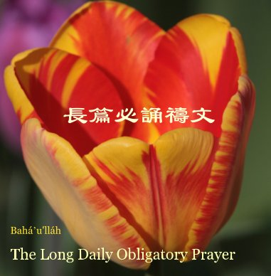 The Bahá'í Long Obligatory Daily Prayer illustrated with nine-pointed stars. book cover