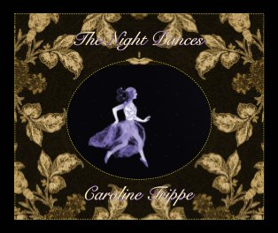 The Night Dances book cover
