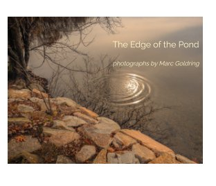 The Edge of the Pond book cover
