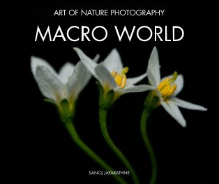 Macro World book cover