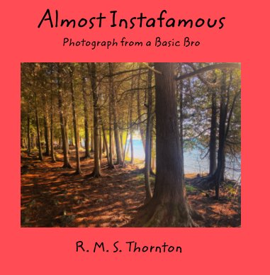 Almost Instafamous book cover