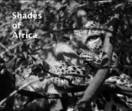 shades of africa book cover
