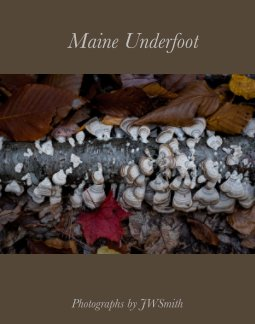 Maine Underfoot book cover