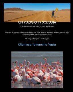 Un viaggio in solitaria (tascabile) book cover
