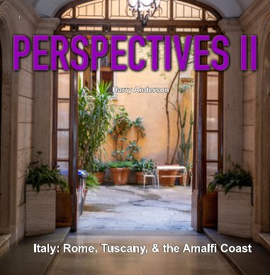 Perspectives II book cover