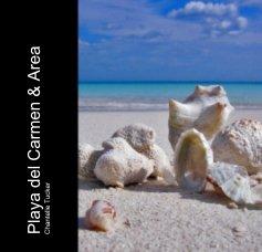 Playa del Carmen & Area book cover