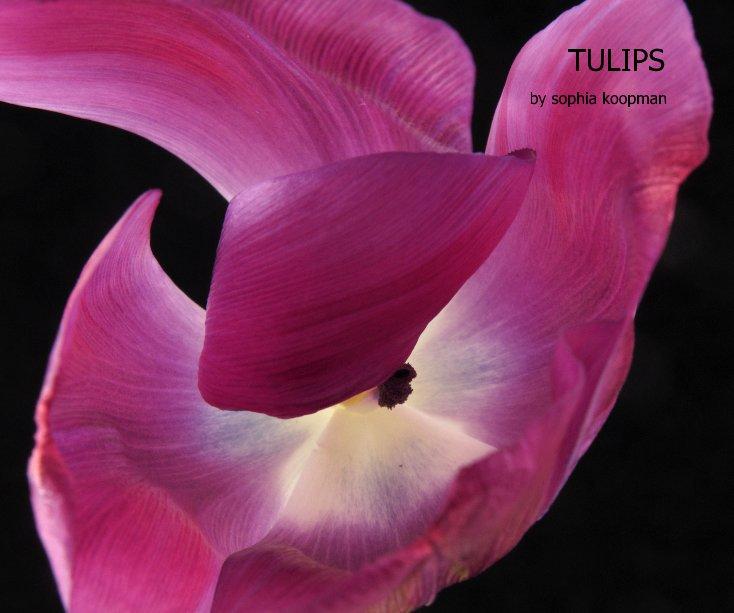 View TULIPS by Sophia Koopman