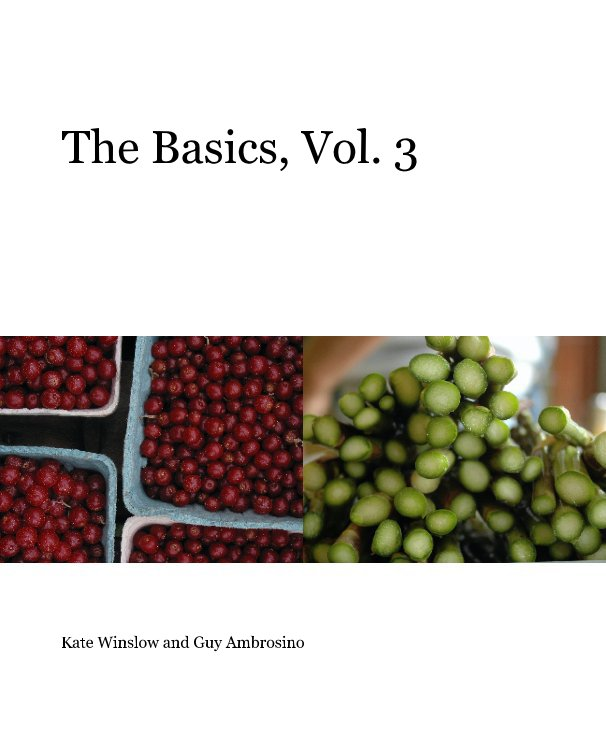 View The Basics, Vol. 3 by Kate Winslow and Guy Ambrosino