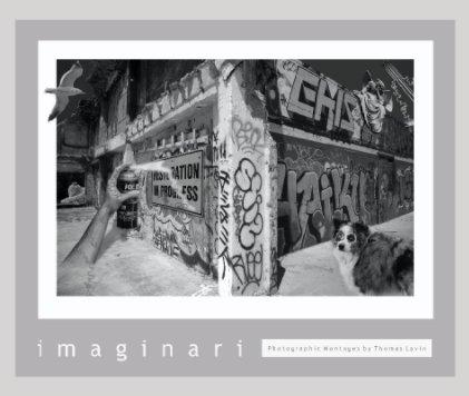 imaginari book cover