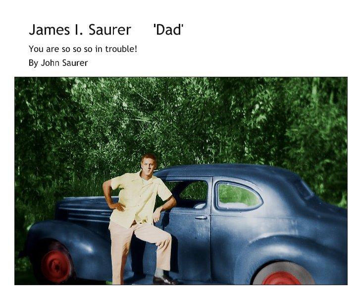 View James I. Saurer     'Dad' by John Saurer