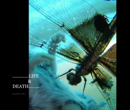 Life & Death book cover
