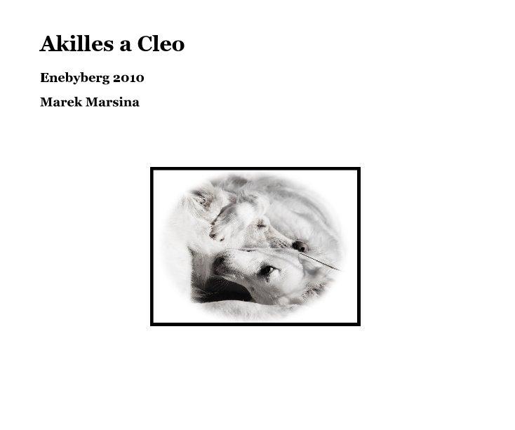Akilles a Cleo by Marek Marsina   Blurb Books