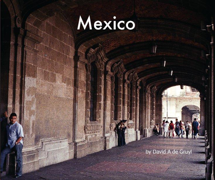 View Mexico by David de Gruyl