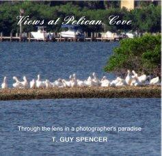 Views at Pelican Cove book cover