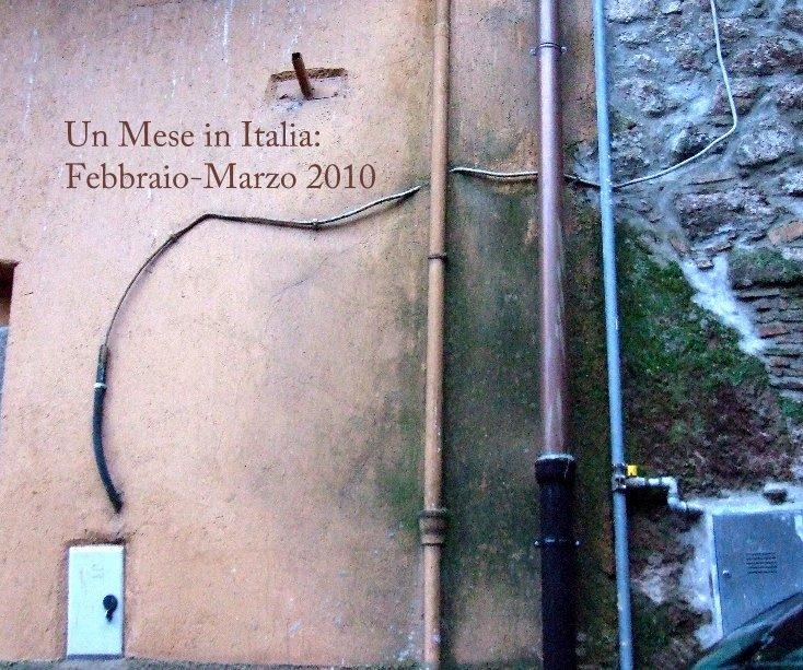 View Un Mese in Italia: Febbraio-Marzo 2010 by Dennis Argall