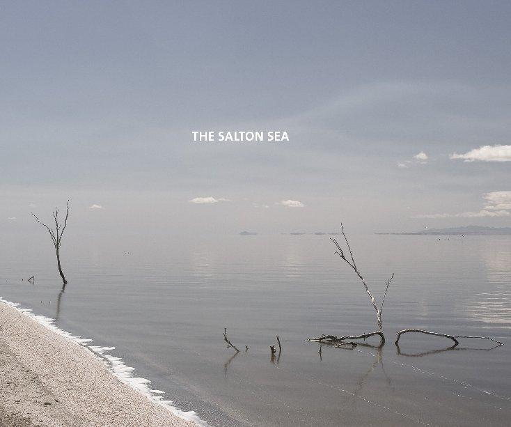 View THE SALTON SEA by Clay Lipsky