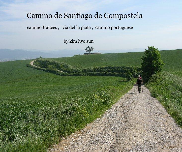 Camino De Santiago De Compostela By Kim Hyo Sun Blurb Books