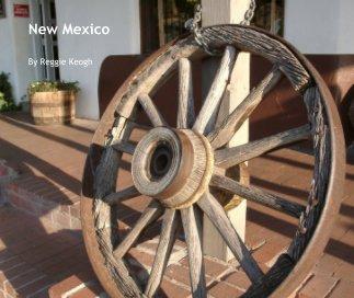 New Mexico book cover