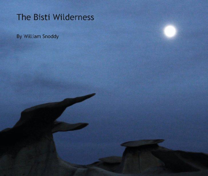 View The Bisti Wilderness by William Snoddy