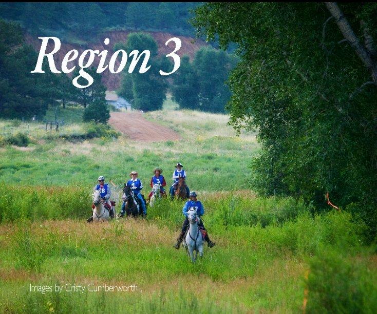 View Region 3 by Cristy Cumberworth
