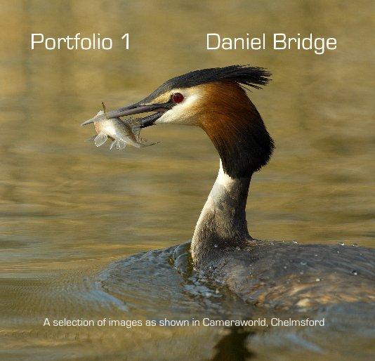 View Portfolio 1 by Daniel Bridge
