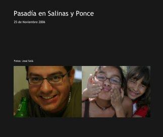 Pasadía en Salinas y Ponce book cover