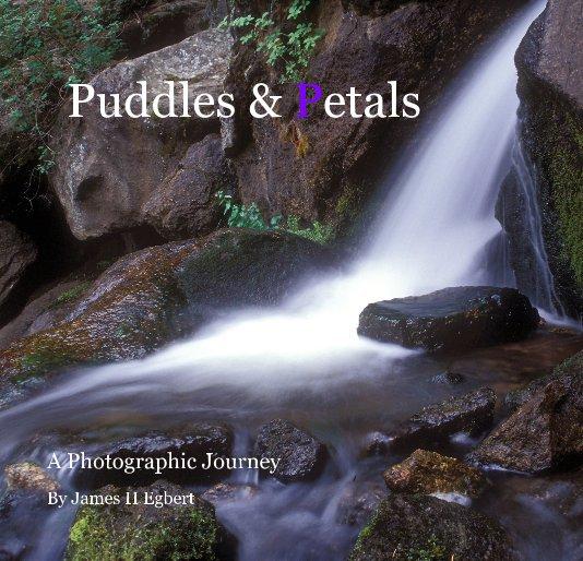 View Puddles & Petals by James H Egbert