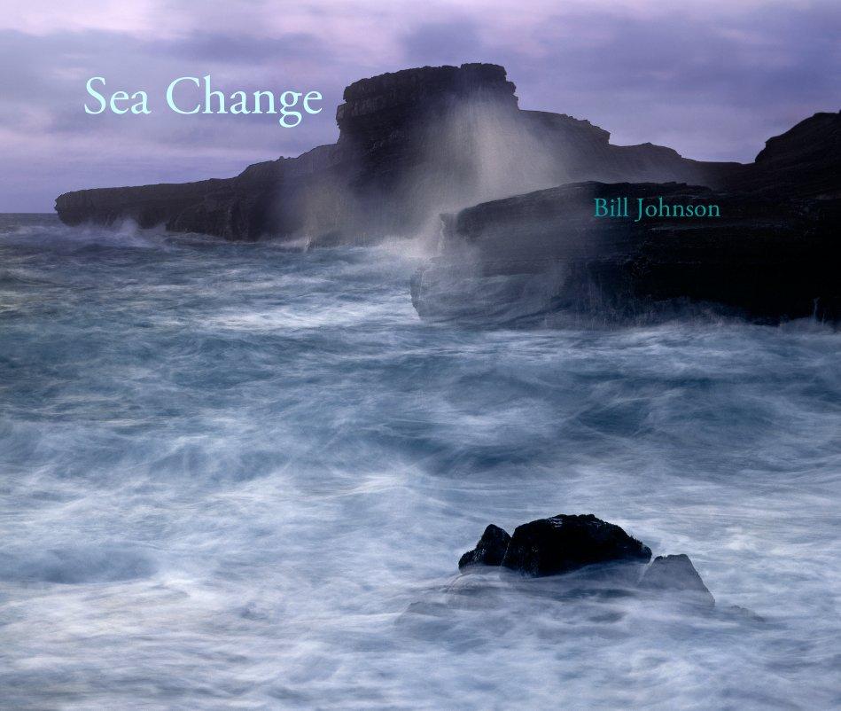 View Sea Change by Bill Johnson