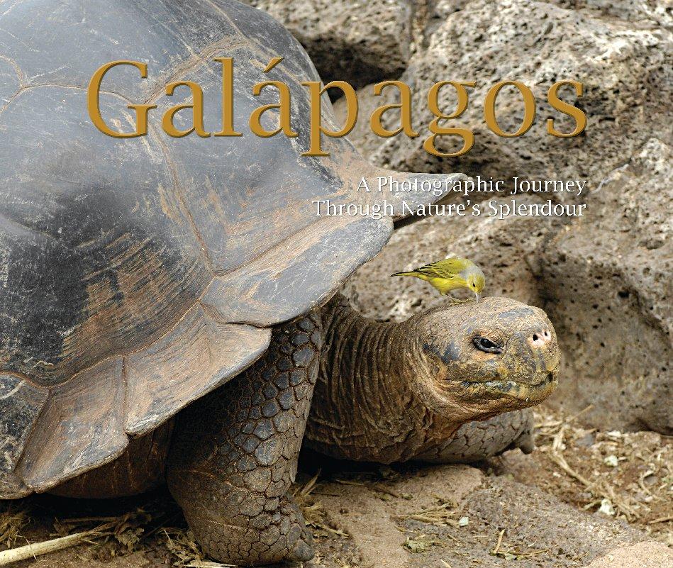 View Galapagos by Ken Schneider