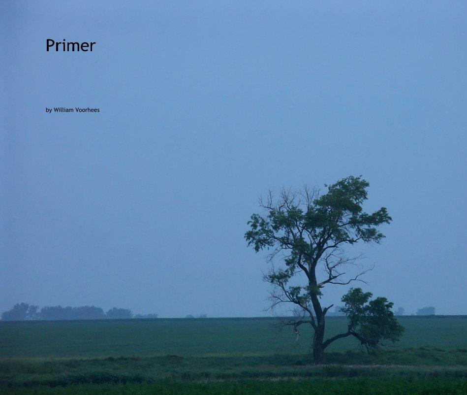 View Primer by William Voorhees