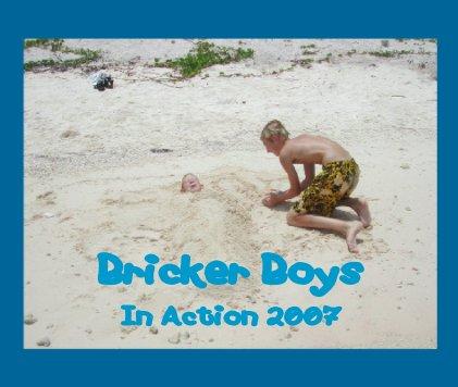 Bricker Boys book cover