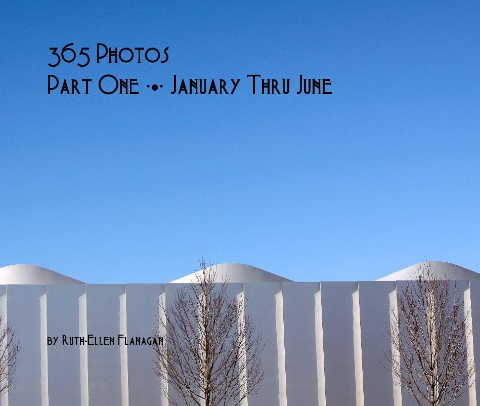 View 365 Photos Part One ∙•∙ January Thru June by Ruth-Ellen Flanagan