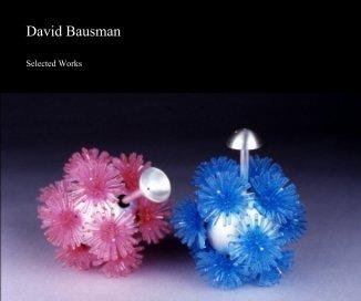 David Bausman book cover