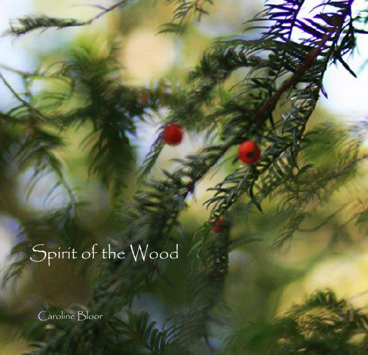 View Spirit of the Wood by Caroline Bloor