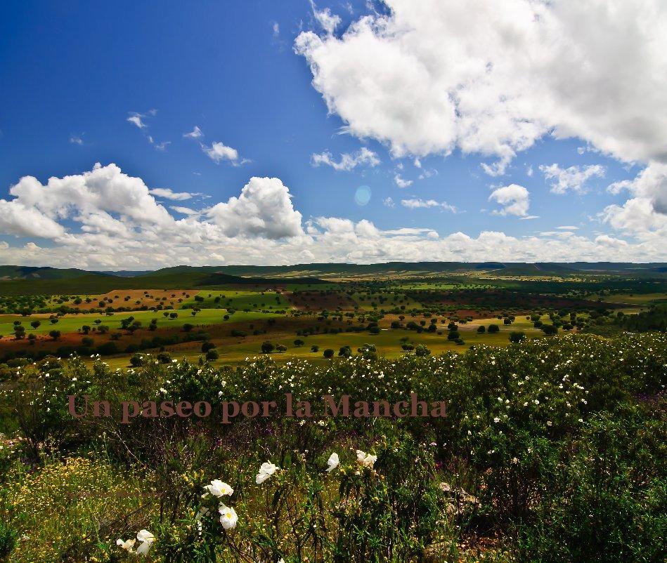 View Un paseo por la Mancha by Manuel Benavente