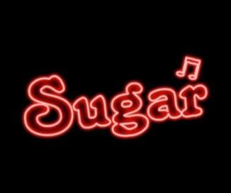 Sugar book cover