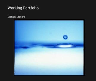 Working Portfolio book cover