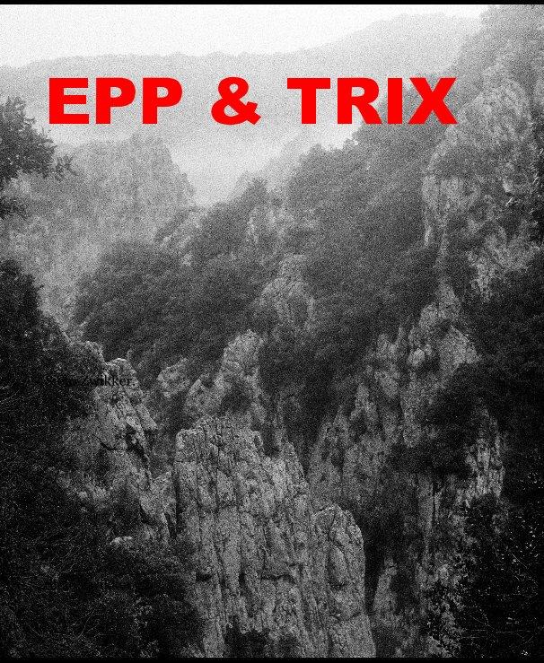 EPP & TRIX by Sieto Zwikker   Blurb Books UK