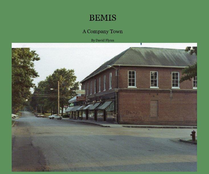 View BEMIS by David Flynn